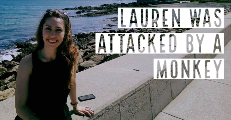 Lauren got attacked by a monkey